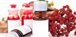 植物精油:减肥首选这四种植物精油