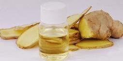关于生姜油