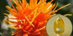 红花籽油的五大妙用